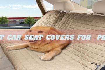 Best Car Seat cOvers for Pets